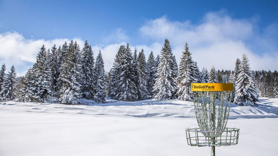 Winter Disc Golf