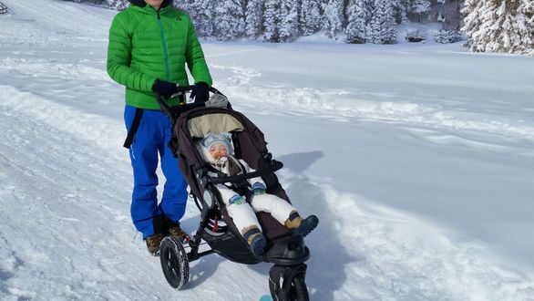Strollers in the Snow